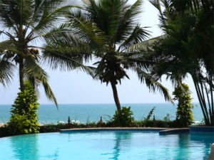 Swimmingpool with ocean view surrounded by shady palm trees.