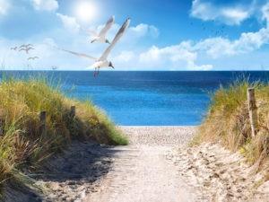 Tantraseminar an der Nordsee, geniesse in seminarfreien Zeiten den Strand, die Sonne und Spaziergänge am Meer.
