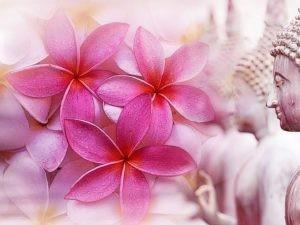 Nirodhyama ist der Weg der Mühelosigkeit in der Meditation und führt dich in die Transzendenz.